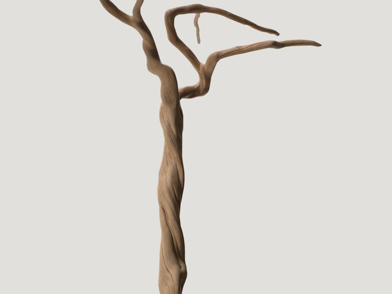 Coffee tree sculpture. Bleached, sanded and set on a modern black steel base.  Andrianna Shamaris. The Leader In Modern Organic Design.
