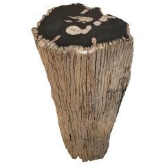 Andrianna Shamaris Contrasting Raw and Polished Petrified Wood Pedestal