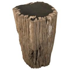 Andrianna Shamaris Contrasting Raw and Polished Petrified Wood Side Table