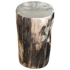 Andrianna Shamaris Contrasting Toned High Quality Petrified Wood Side Table