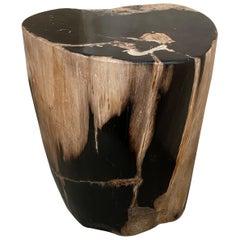 Andrianna Shamaris Contrasting Toned Petrified Wood Side Table