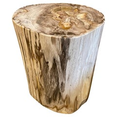 Andrianna Shamaris Contrasting Toned Petrified Wood Side Table with Added Resin