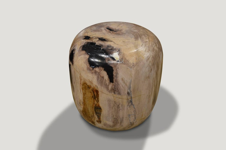 Super smooth petrified wood drum shape side table, in stunning natural beige and black tones.  We source the highest quality petrified wood available. Each piece is hand selected and highly polished with minimal cracks. Petrified wood is extremely