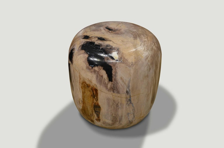Andrianna Shamaris Drum Shape Petrified Wood In New Condition For Sale In New York, NY