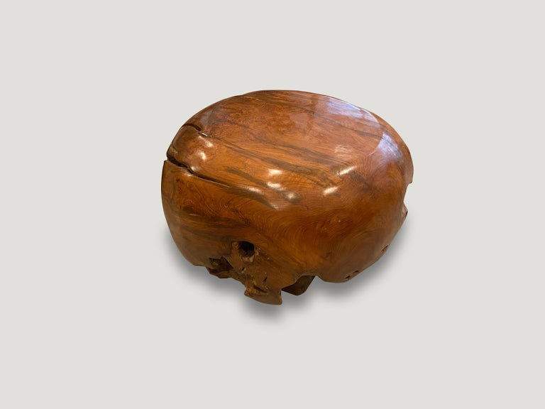 Contemporary Andrianna Shamaris Drum Shaped Teak Wood Coffee Table For Sale
