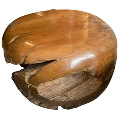 Andrianna Shamaris Drum Style Teak Wood Coffee Table