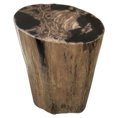 Andrianna Shamaris Earth Toned Petrified Wood Side Table