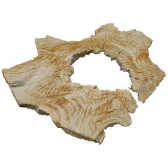 Andrianna Shamaris Erosion Teak Wood Sculpture