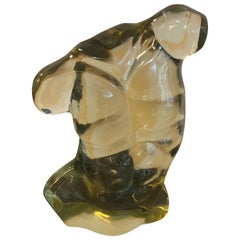 Andrianna Shamaris Glass Male Torso