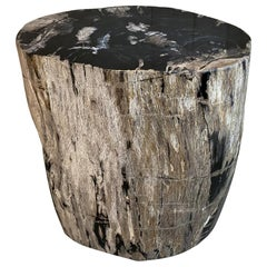 Andrianna Shamaris Grey and Black Oval Petrified Wood Side Table