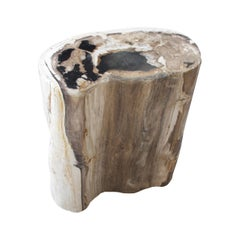 Andrianna Shamaris High Quality Oval Petrified Wood Side Table