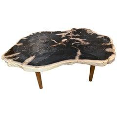Andrianna Shamaris High Quality Petrified Wood Coffee Table Natural Teak Base