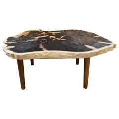 Andrianna Shamaris High Quality Petrified Wood Coffee Table with Teak Wood Base