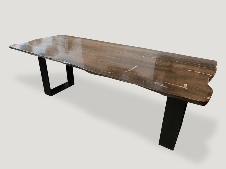 High quality petrified wood live edge dining table, coffee table or counter top. This two inch thick slab is shown with a black solid steel base which we can also switch out for two espresso stained wooden bases, coffee table height, if preferred.