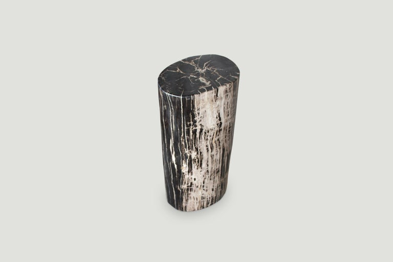 Organic Modern Andrianna Shamaris High Quality Petrified Wood Side Table or Pedestal For Sale