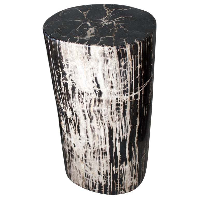 Andrianna Shamaris High Quality Petrified Wood Side Table or Pedestal For Sale
