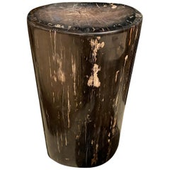Andrianna Shamaris High Quality Petrified Wood Side Table or Pedestal