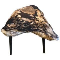 Andrianna Shamaris High Quality Petrified Wood Slab Top Side Table