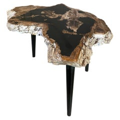 Andrianna Shamaris High Quality Petrified Wood Slab Top Side Table