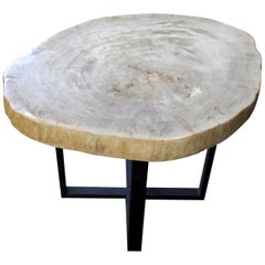 Andrianna Shamaris High Quality Petrified Wood Slab Top Table