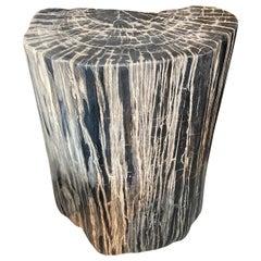 Andrianna Shamaris Impressive Grey and Black Petrified Wood Side Table