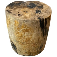 Andrianna Shamaris Impressive Tiger Toned High Quality Petrified Wood Side Table