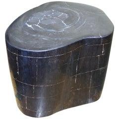 Andrianna Shamaris Indigo and Black Super Smooth Petrified Wood Side Table