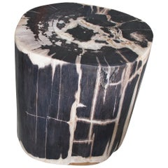 Andrianna Shamaris Large High Quality Petrified Wood Side Table