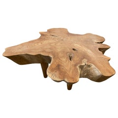 Andrianna Shamaris Midcentury Style Organic Teak Wood Coffee Table