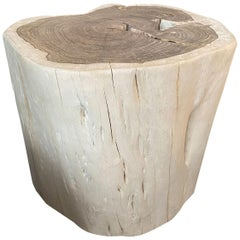 Andrianna Shamaris Minimalist Bleached Sono Wood Side Table or Stool