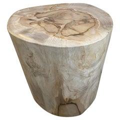 Andrianna Shamaris Minimalist High Quality Petrified Wood Side Table
