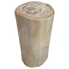 Andrianna Shamaris Minimalist High Quality Petrified Wood Side Table or Pedestal