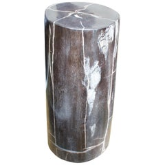 Andrianna Shamaris Minimalist Petrified Wood Side Table