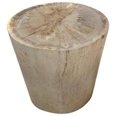 Minimalist Petrified Wood Side Table