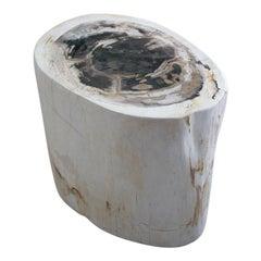 Andrianna Shamaris Neutral Toned Petrified Wood Side Table