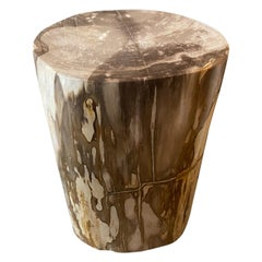 Andrianna Shamaris Neutral Toned Petrified Wood Side Table