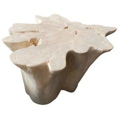 Andrianna Shamaris Organic Bleached Teak Wood Coffee Table