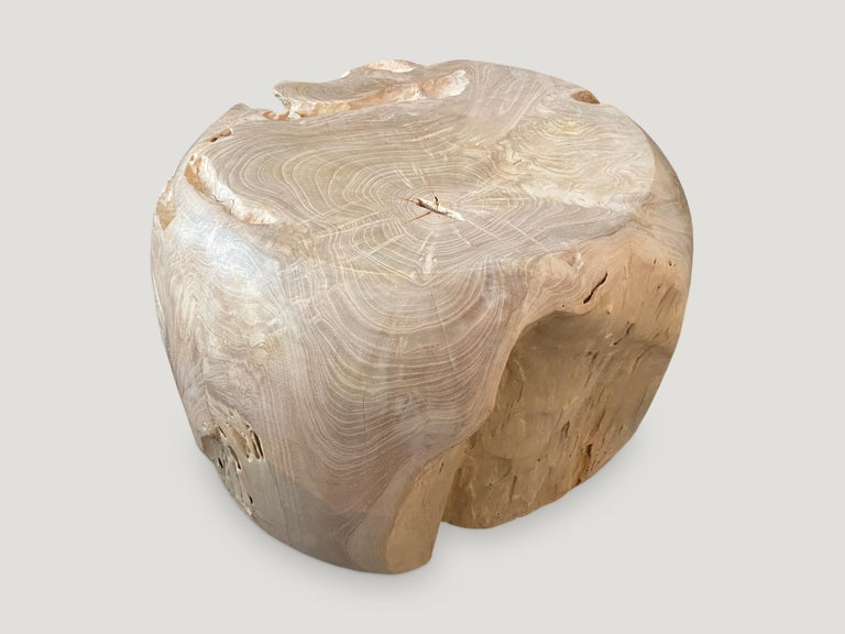 Organic Modern Andrianna Shamaris Organic Bleached Teak Wood Drum Side Table For Sale