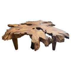 Andrianna Shamaris Organic Teak Wood Root Coffee Table