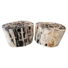 Andrianna Shamaris Pair of Impressive Petrified Wood Side Tables