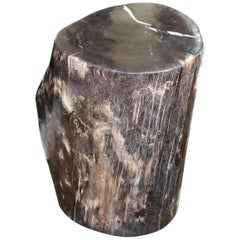 Fine Andrianna Shamaris Petrified Wood Side Table Or Stool At 1Stdibs Inzonedesignstudio Interior Chair Design Inzonedesignstudiocom