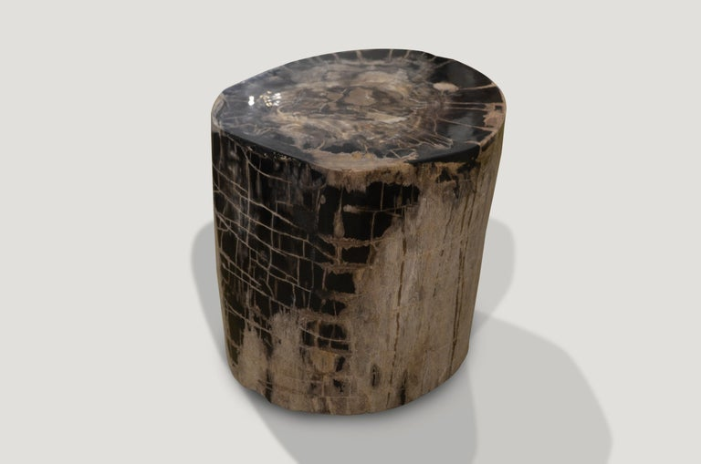 Impressive petrified wood side table with a stunning grey and black checkered pattern created naturally within the wood.