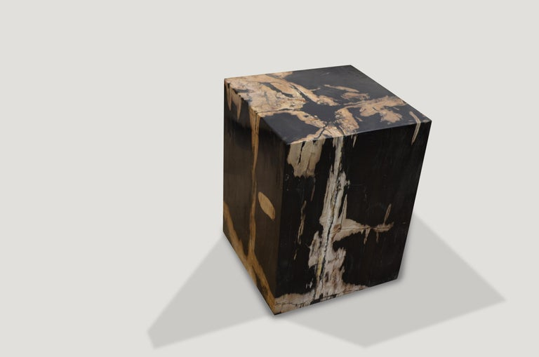 Contrasting natural toned black and cream petrified wood side table.  Andrianna Shamaris. The Leader In Modern Organic Design.