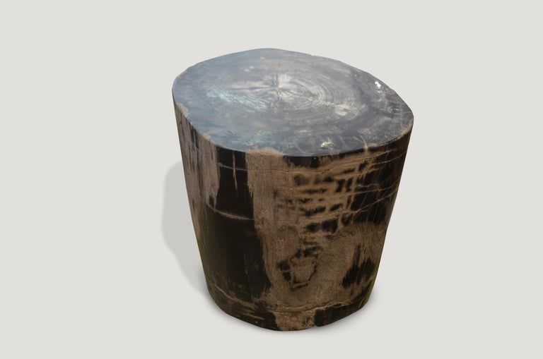 Stunning grey, black and beige checkered pattern created naturally within the wood.  We source the highest quality petrified wood available. Each piece is hand selected and highly polished with minimal cracks. Petrified wood is extremely versatile