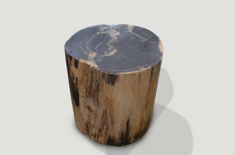 Striking contrasting color tones on this petrified wood side table.