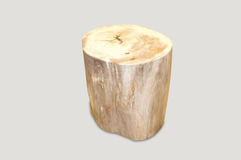 Organic Modern Andrianna Shamaris Petrified Wood Side Table For Sale