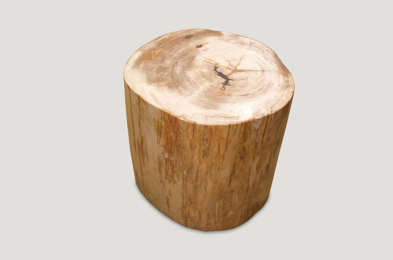 Andrianna Shamaris Petrified Wood Side Table In Excellent Condition For Sale In New York, NY