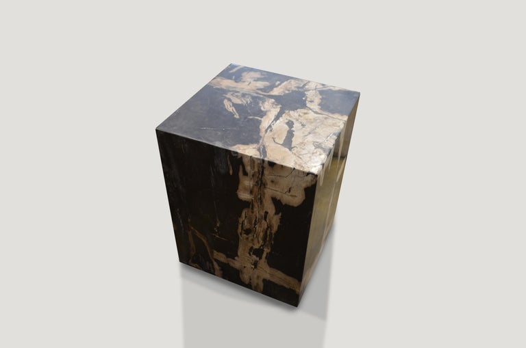 18th Century and Earlier Andrianna Shamaris Petrified Wood Side Table For Sale