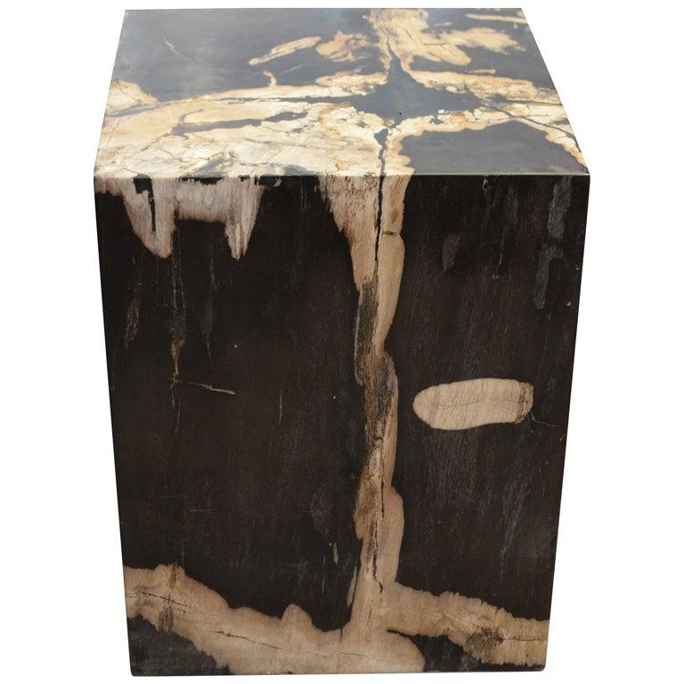 Andrianna Shamaris Petrified Wood Side Table For Sale