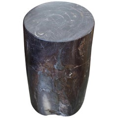Andrianna Shamaris Petrified Wood Side Table or Stool